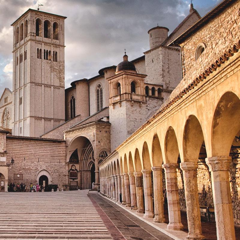 Assisi Fondazione Albero della Vita