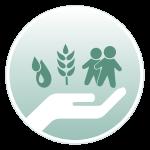 Area di intervento - Sviluppo - L'Albero della Vita