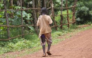 Sicurezza alimentare negli slum di Mathare e Korogocho
