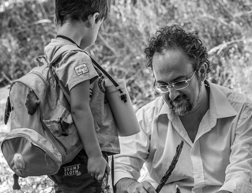 Salvatore Angelico è il nuovo Presidente di Fondazione L'Albero della Vita